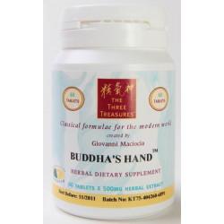 Buddha's Hand (Mãos de Buda)